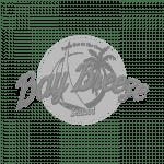 bay breeze gray scale logo